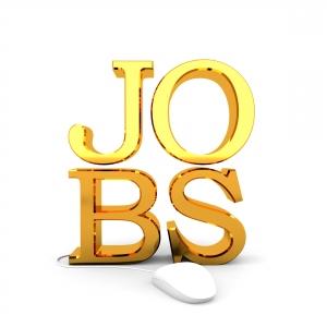 Nellore Jobs